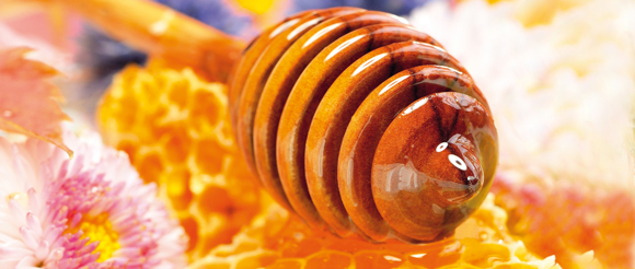 hunajasta580